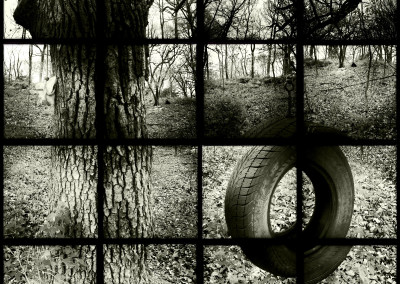 Backyard Tire 01