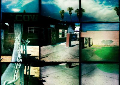 Cowpony 01