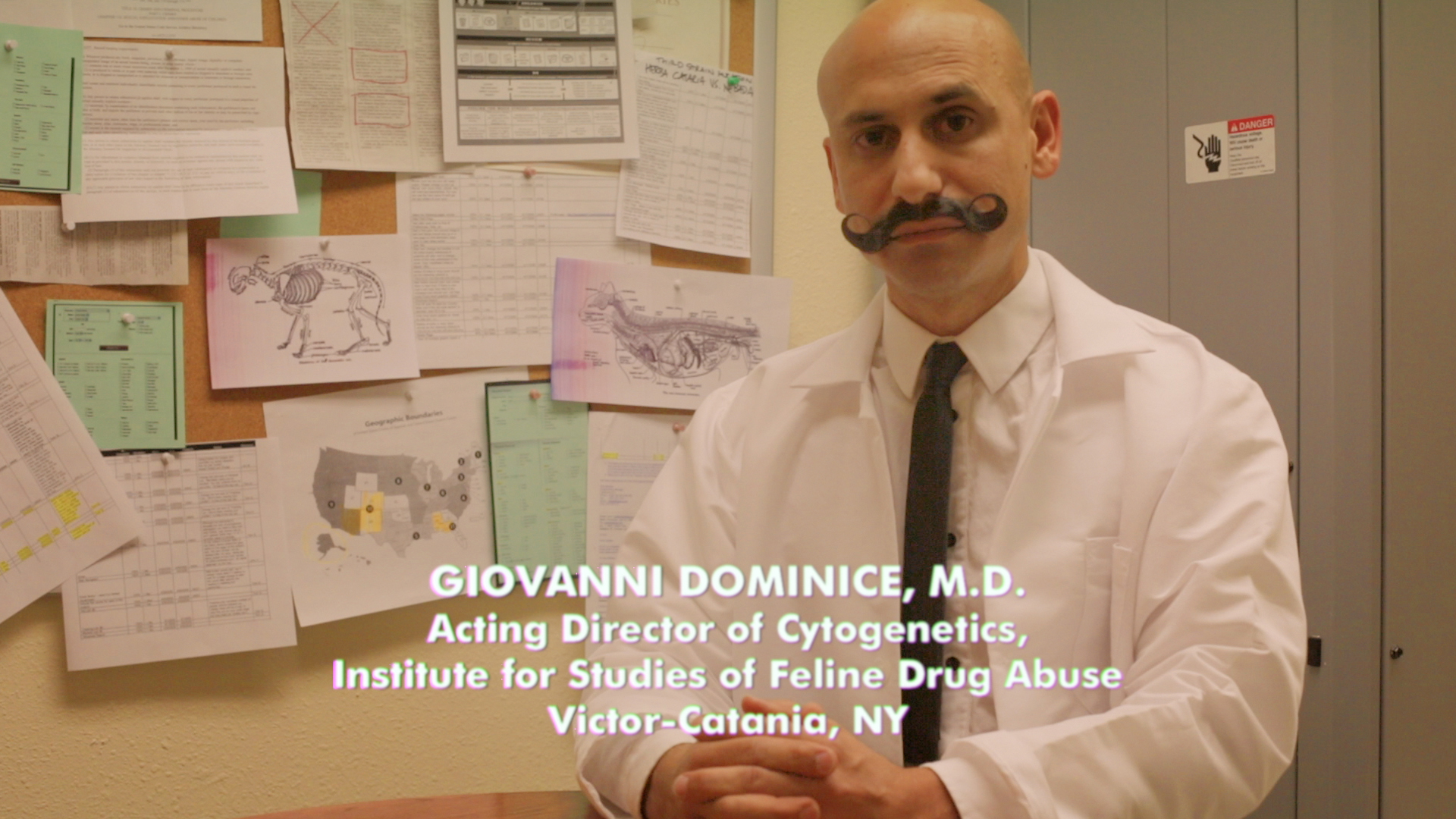 Giovanni Dominice MD