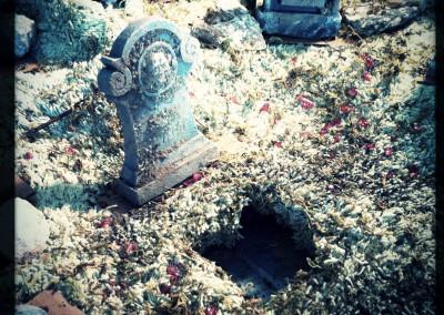 BTS 25 - Open grave