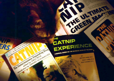 """Catnip: Egress to Oblivion?"" - Still 09"