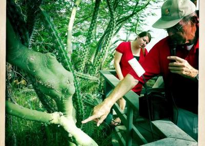 iPhone Hipstamatic: Biosphere II - 05 by Jason Willis