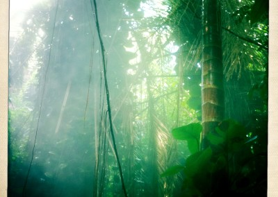 iPhone Hipstamatic: Biosphere II - 15 by Jason Willis
