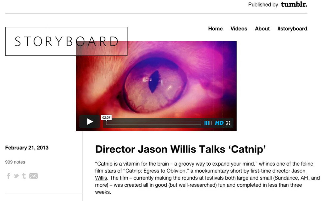 Interview: Tumblr.com's Storyboard – Director Jason Willis Talks 'Catnip'