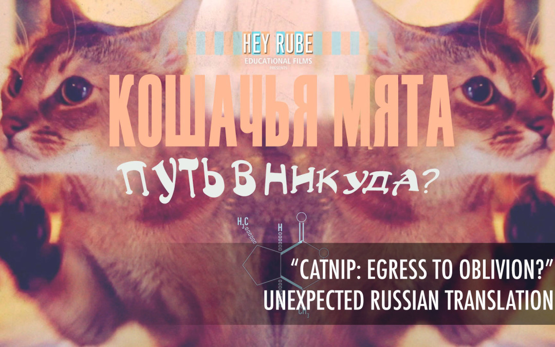 Catnip: Egress to Oblivion? – Unexpected Russian Translation – КОШАЧЬЯ МЯТА ПУТЬ В НИКУДА
