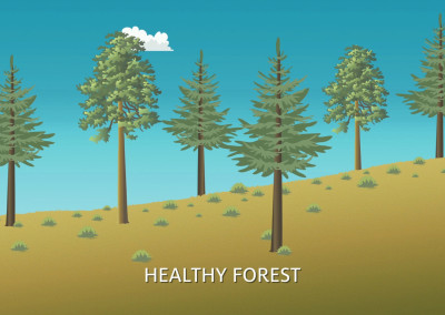 Mt Lemmon Science Tour - Motion Graphics - Forest Fire History 01