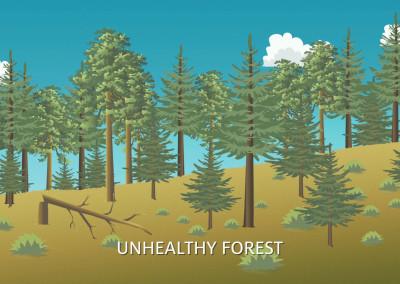 Mt Lemmon Science Tour - Motion Graphics - Forest Fire History 04