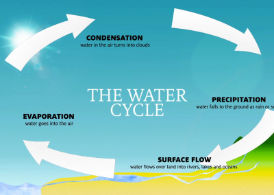 Mt Lemmon Science Tour - Motion Graphics - Water Cycle 01