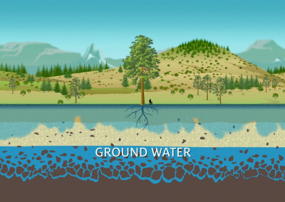 Mt Lemmon Science Tour - Motion Graphics - Water Cycle 02